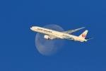 リクパパさんが、伊丹空港で撮影した日本航空 777-346/ERの航空フォト(写真)