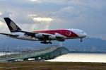 we love kixさんが、関西国際空港で撮影したシンガポール航空 A380-841の航空フォト(写真)
