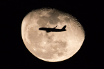 YAMMARさんが、羽田空港で撮影したスターフライヤー A320-214の航空フォト(写真)