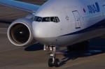 たなしんさんが、羽田空港で撮影した全日空 777-281/ERの航空フォト(写真)