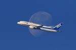 リクパパさんが、伊丹空港で撮影した全日空 787-8 Dreamlinerの航空フォト(写真)