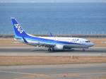 きゅうさんが、中部国際空港で撮影した全日空 737-781の航空フォト(写真)