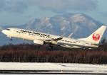 にしやんさんが、新千歳空港で撮影した日本航空 737-846の航空フォト(写真)