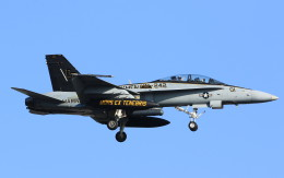 VIPERさんが、厚木飛行場で撮影したアメリカ海兵隊 F/A-18D Hornetの航空フォト(写真)