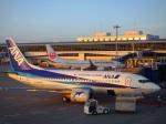 ken1☆MYJさんが、中部国際空港で撮影したANAウイングス 737-54Kの航空フォト(写真)
