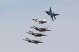 Koenig117さんが、岐阜基地で撮影した航空自衛隊 F-2Aの航空フォト(写真)