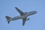 HISATAKUさんが、ケアンズ空港で撮影したタイガーエア・オーストラリア A320-232の航空フォト(写真)