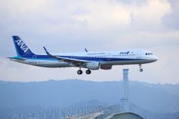 水月さんが、関西国際空港で撮影した全日空 A321-211の航空フォト(写真)