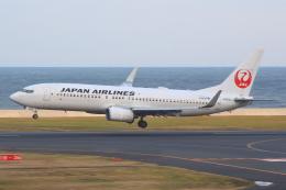 Semirapidさんが、北九州空港で撮影した日本航空 737-846の航空フォト(写真)