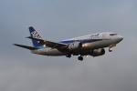 E-75さんが、函館空港で撮影したANAウイングス 737-54Kの航空フォト(写真)