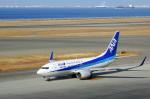せせらぎさんが、中部国際空港で撮影した全日空 737-781の航空フォト(写真)