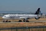 kansai-spotterさんが、フランクフルト国際空港で撮影したルフトハンザドイツ航空 A340-313Xの航空フォト(写真)