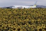 planetさんが、女満別空港で撮影したAIR DO 767-381の航空フォト(写真)