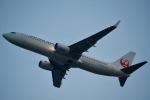 ジャコビさんが、関西国際空港で撮影した日本航空 737-846の航空フォト(写真)