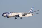 ファインディングさんが、羽田空港で撮影した全日空 787-9の航空フォト(写真)