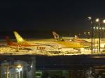 Snow manさんが、新千歳空港で撮影したスクート 787-9の航空フォト(写真)