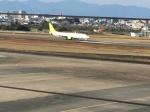 充雅さんが、宮崎空港で撮影したソラシド エア 737-86Nの航空フォト(写真)