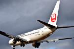 we love kixさんが、伊丹空港で撮影した日本航空 737-846の航空フォト(写真)