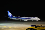 516105さんが、鳥取空港で撮影した全日空 737-881の航空フォト(写真)