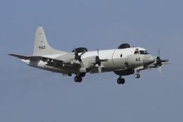 isiさんが、厚木飛行場で撮影した海上自衛隊 UP-3Dの航空フォト(写真)