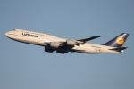 ファインディングさんが、羽田空港で撮影したルフトハンザドイツ航空 747-830の航空フォト(写真)