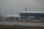 masa634さんが、上海浦東国際空港で撮影したユナイテッド航空 787-9の航空フォト(写真)