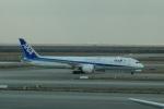 masa634さんが、上海浦東国際空港で撮影した全日空 787-9の航空フォト(写真)