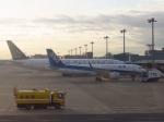 JA7NPさんが、羽田空港で撮影した全日空 A320-271Nの航空フォト(写真)