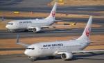ヨッちゃんさんが、羽田空港で撮影した日本航空 737-846の航空フォト(写真)