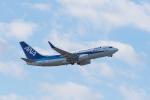 GOOSEMAN777さんが、成田国際空港で撮影した全日空 737-781の航空フォト(写真)