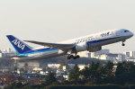 B14A3062Kさんが、伊丹空港で撮影した全日空 787-881の航空フォト(写真)