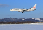 tuckerさんが、女満別空港で撮影した日本航空 737-846の航空フォト(写真)