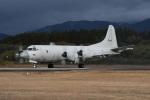 masatakaさんが、鹿屋航空基地で撮影した海上自衛隊 P-3Cの航空フォト(写真)