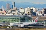 パンダさんが、羽田空港で撮影した日本航空 777-246/ERの航空フォト(写真)