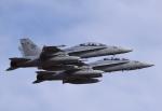 Aurora56さんが、厚木飛行場で撮影したアメリカ海兵隊 F/A-18の航空フォト(写真)