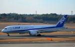 Wasawasa-isaoさんが、成田国際空港で撮影した全日空 787-881の航空フォト(写真)