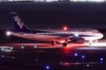 JA8961RJOOさんが、関西国際空港で撮影した全日空 A320-211の航空フォト(写真)
