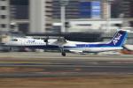 セブンさんが、伊丹空港で撮影したANAウイングス DHC-8-402Q Dash 8の航空フォト(写真)