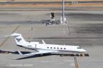 ハム太郎さんが、羽田空港で撮影した不明 G-V Gulfstream Vの航空フォト(写真)