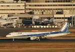 長月ぽっぷさんが、羽田空港で撮影した全日空 A321-211の航空フォト(写真)