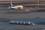 masakazuさんが、羽田空港で撮影した全日空 A320-211の航空フォト(写真)