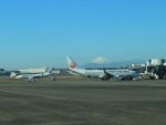 naotonopapaさんが、羽田空港で撮影した日本航空 737-846の航空フォト(写真)