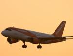 gomaさんが、ミュンヘン・フランツヨーゼフシュトラウス空港で撮影したイージージェット A319-111の航空フォト(写真)