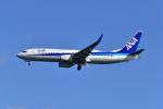 ポン太さんが、羽田空港で撮影した全日空 737-881の航空フォト(写真)
