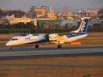 KIX787-9さんが、伊丹空港で撮影したANAウイングス DHC-8-402Q Dash 8の航空フォト(写真)