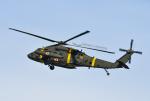 bigfoot11さんが、烏山空軍基地で撮影したアメリカ陸軍 UH-60Q Black Hawk (S-70A)の航空フォト(写真)