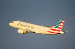 天空の鳩さんが、デトロイト・メトロポリタン・ウェイン・カウンティ空港で撮影したアメリカン航空 A319-112の航空フォト(写真)