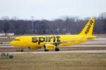 天空の鳩さんが、デトロイト・メトロポリタン・ウェイン・カウンティ空港で撮影したスピリット航空 A320-232の航空フォト(写真)