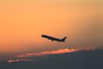 masakazuさんが、羽田空港で撮影した全日空の航空フォト(写真)