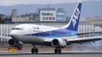 Take51さんが、伊丹空港で撮影したANAウイングス 737-54Kの航空フォト(写真)